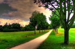vivir_el_camino